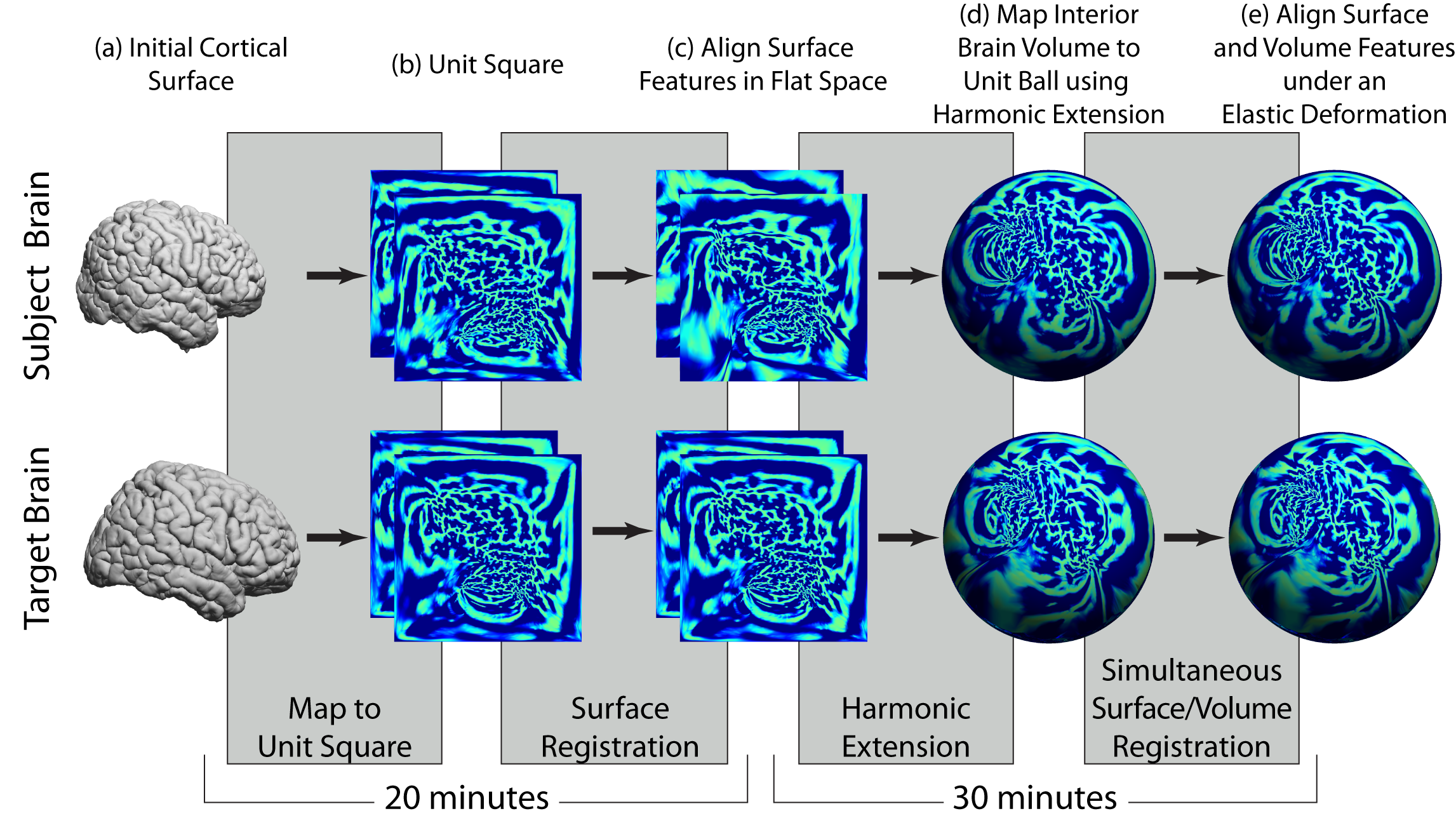 BrainSuite Surface/Volume Registration Workflow